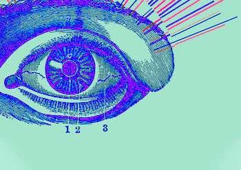 eriskin psikoz eskisehir ag psikiyatri - Hizmetlerimiz